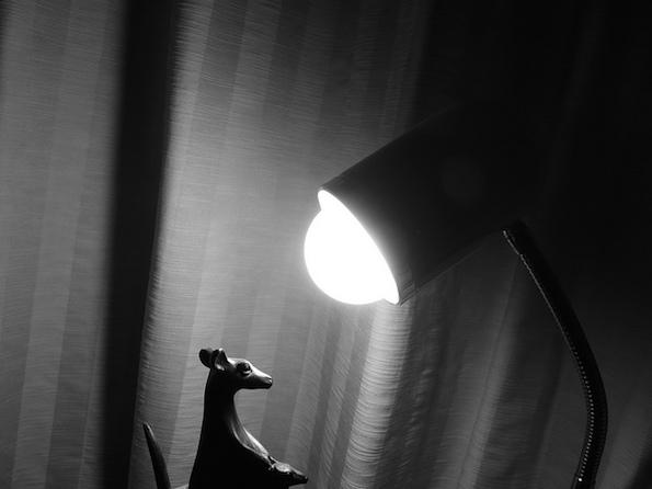 mustavalkokuva lampusta